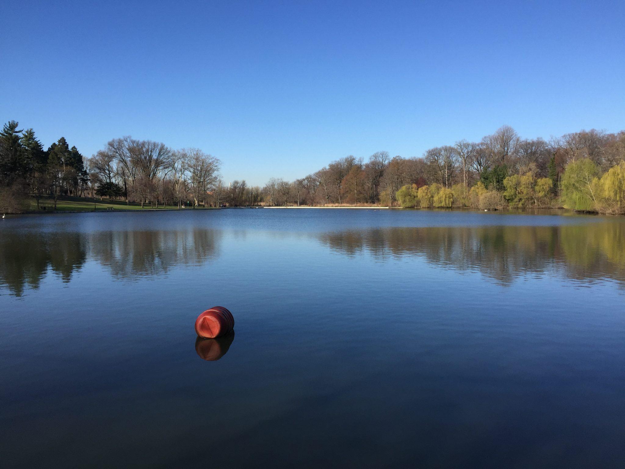 Kissena 公园的人工湖
